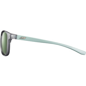 Julbo Journey Polar 3 Goggles, gris/verde